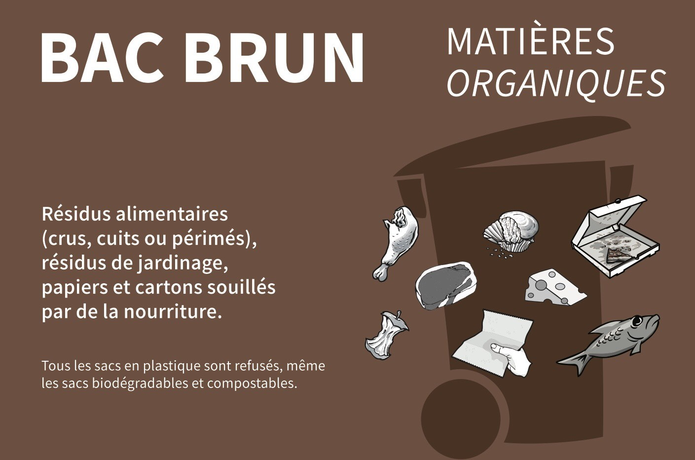 Bac brun