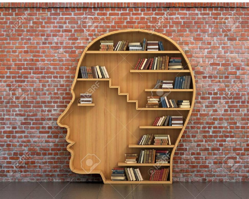 Cerveau livres